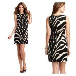 LOFT zebra Animal print shift dress